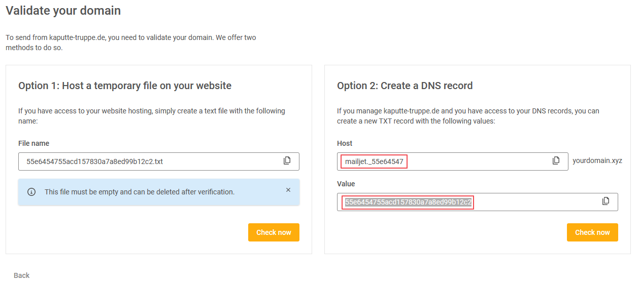 Data to use for creating TXT DNS record